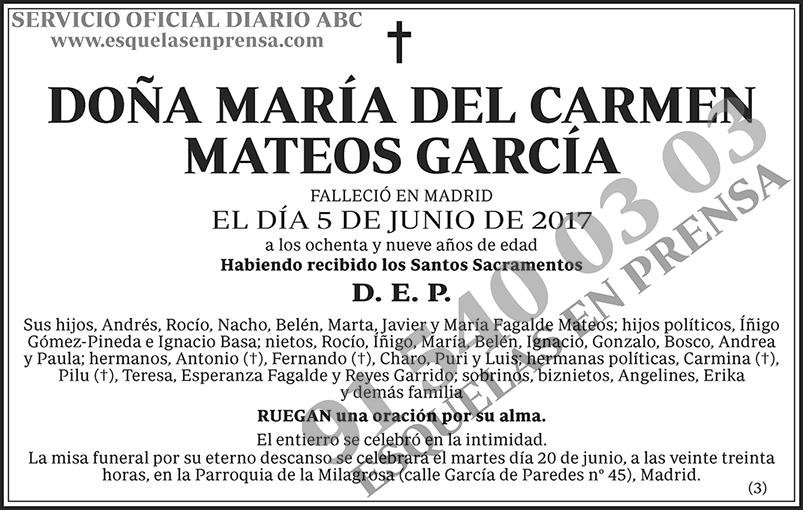María del Carmen Mateos García